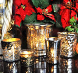 Silver Mercury Glass Holiday Set