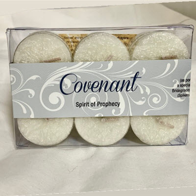 COVENANT TEALIGHTS - 12 PK